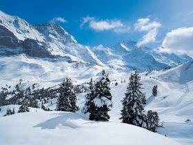 http://www.toursaltitude.com/wp-content/uploads/2014/07/Grindelwald-Wengen-42-280x210.jpg