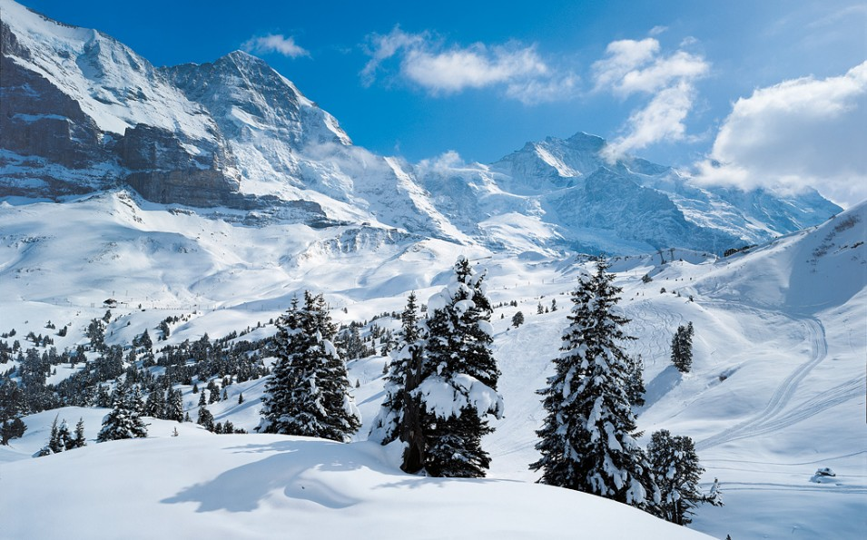 http://www.toursaltitude.com/wp-content/uploads/2014/07/Grindelwald-Wengen-42-955x595.jpg