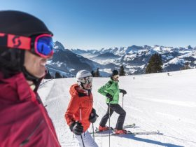 http://www.toursaltitude.com/wp-content/uploads/2018/05/Hornberg_Skifahren-280x210.jpg