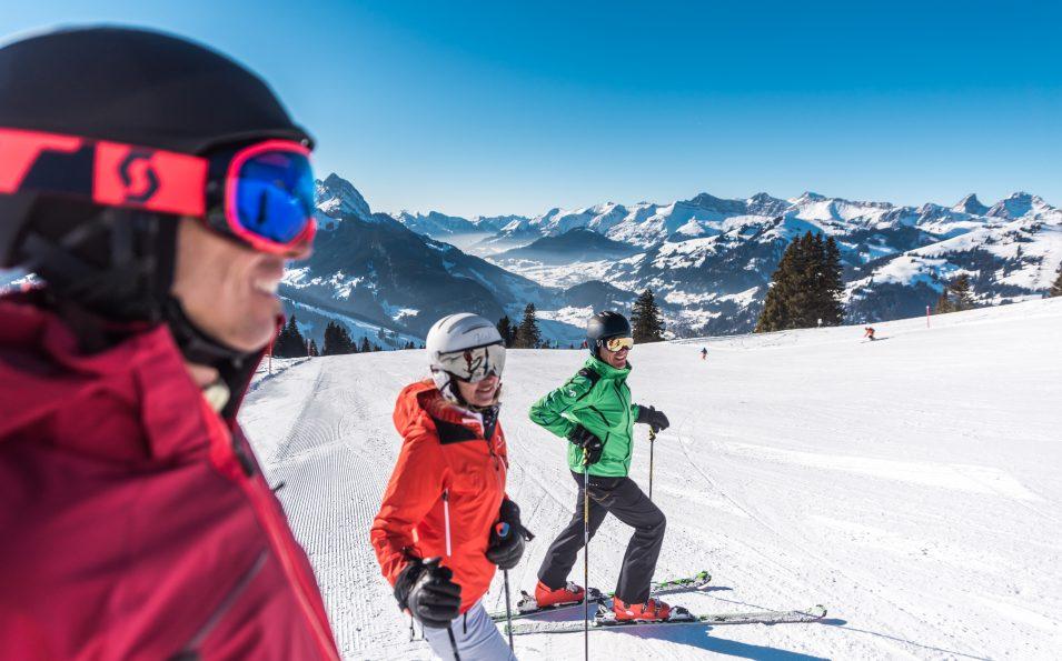 http://www.toursaltitude.com/wp-content/uploads/2018/06/Hornberg_Skifahren-955x595.jpg