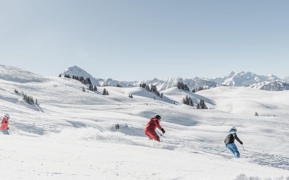 http://www.toursaltitude.com/wp-content/uploads/2018/06/Horneggli_Skifahren-2-955x595.jpg