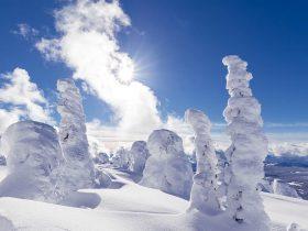 http://www.toursaltitude.com/wp-content/uploads/2019/08/Winter-Scenic-2000x800px-1-280x210.jpg