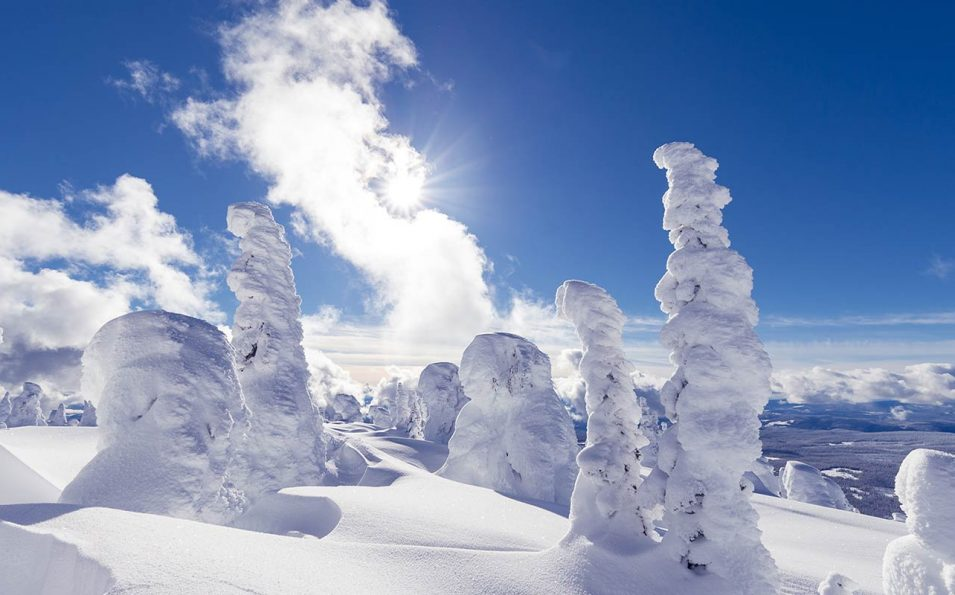 http://www.toursaltitude.com/wp-content/uploads/2019/08/Winter-Scenic-2000x800px-1-955x595.jpg